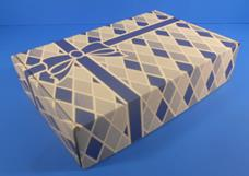 Blue Holiday Packaging - Leaman Container